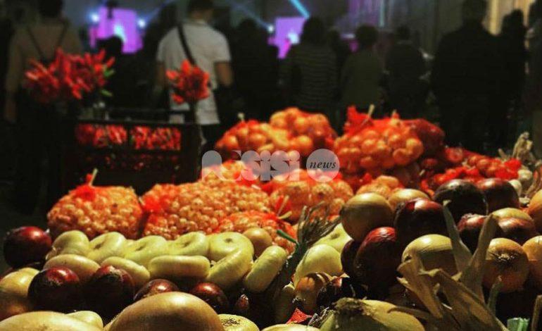 A Cannara la Festa della cipolla 2016: il programma