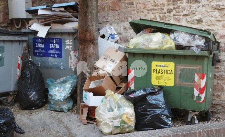 Rifiuti, Comune di Assisi ed Ecocave per una maggiore pulizia: tutte le novità