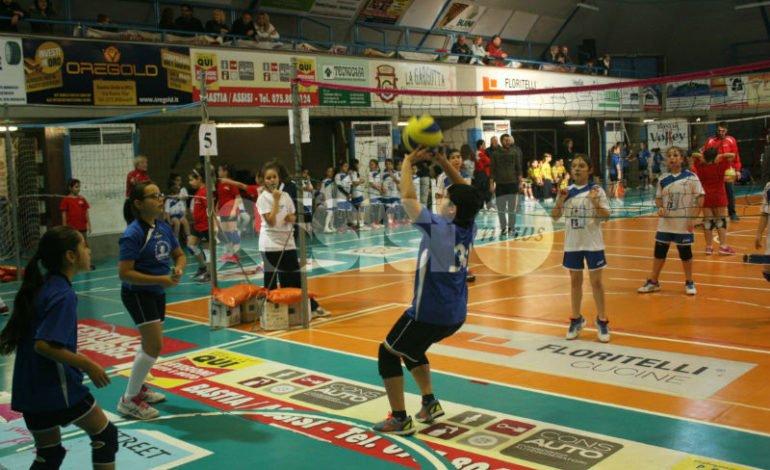Bastia Volley, al via i corsi di minivolley e pallavolo