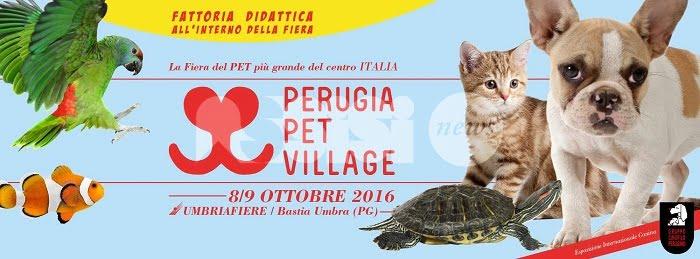 Perugia Pet Village, due giorni dedicati agli animali a Umbriafiere di Bastia Umbra
