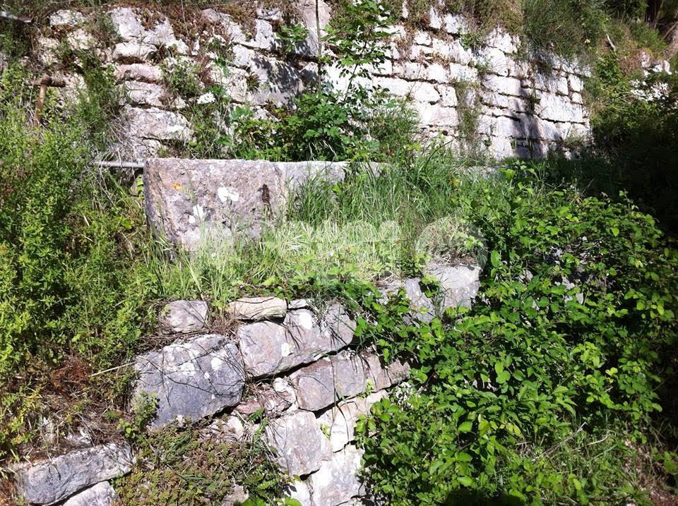 Salvare i fontanili del Subasio ad Assisi, l'appello del professor Bambini