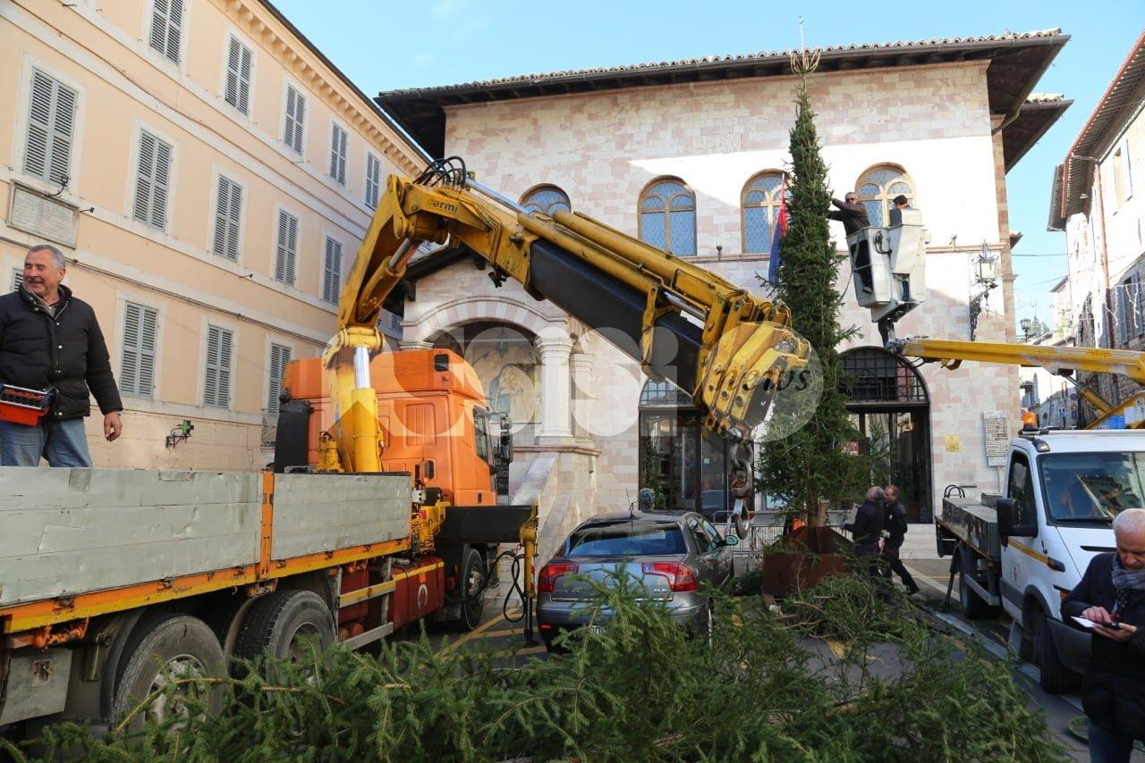 Assisi, via illuminazione e albero dopo le polemiche: si cambia tutto