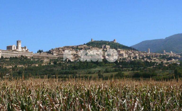 """Terremoto Centro Italia, l'appello di Assisi e Perugia: """"Si dica che l'Umbria è sicura"""""""