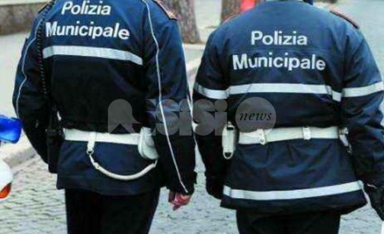 Traffico a Bastia Umbra, Fratelli d'Italia e Fabrizia Renzini all'attacco