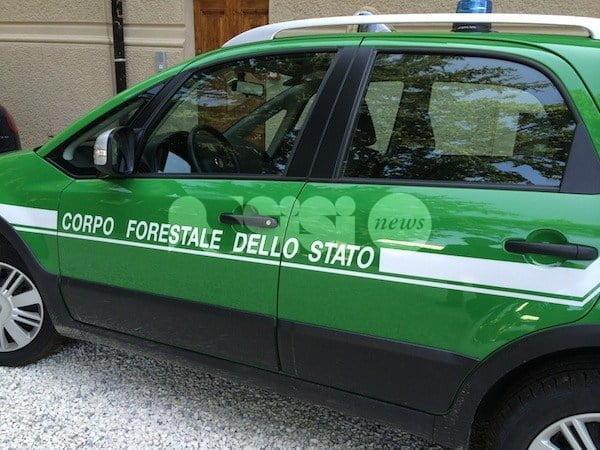 Operazione Earthquake sul post sisma in Abruzzo: perquisizioni ad Assisi