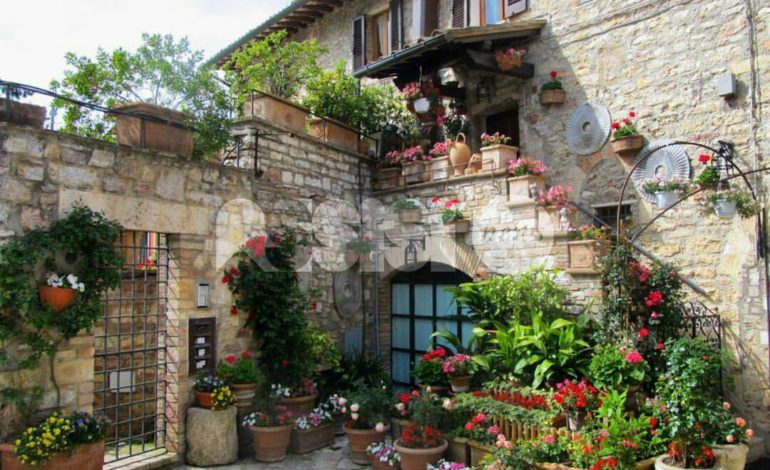 Infiorate e balconi fioriti 2016: tutti i premiati ad Assisi
