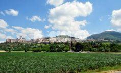 Confcommercio Assisi organizza un incontro tra i cinque candidati