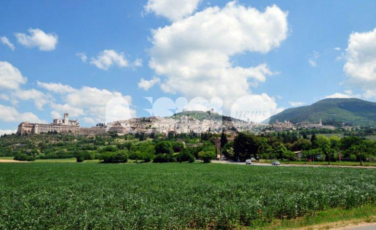 Tassa di soggiorno, Confcommercio Assisi: \