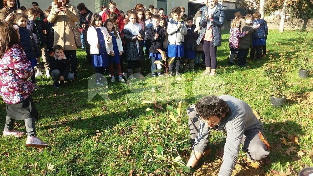 Festa dell'albero 2016, la primaria Palazzo arricchisce giardino della scuola