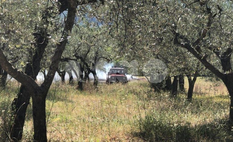 Incendio in un campo a Passaggio di Assisi, vigili del fuoco in azione (foto+video)