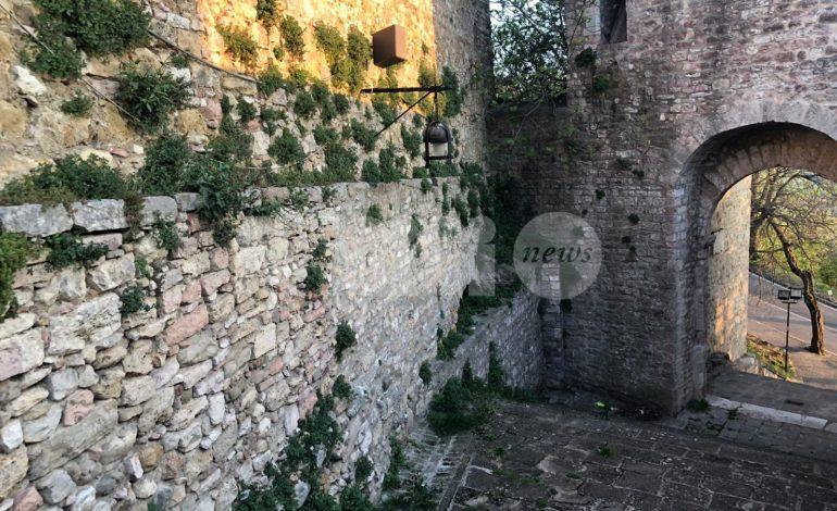Erbacce ad Assisi, svariate le segnalazioni dei cittadini: operai al lavoro