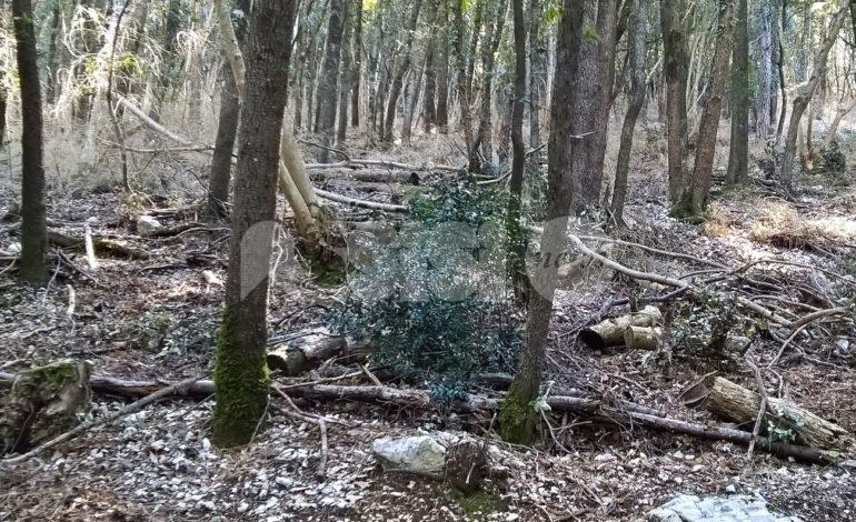Parco del Monte Subasio – Rocca Minore, degrado e incuria: le foto