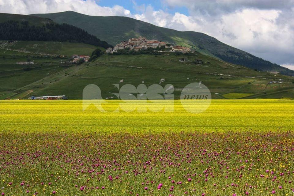 Offerta estiva 2021 di Busitalia, in Umbria incluse Assisi, Castelluccio e Marmore