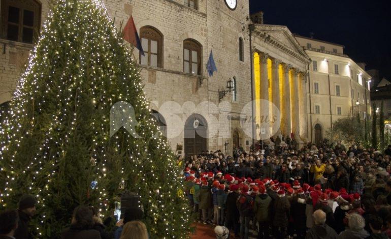 Natale 2019 ad Assisi, nel giorno dell'Immacolata accesi eco-alberi e luminarie (foto+video)
