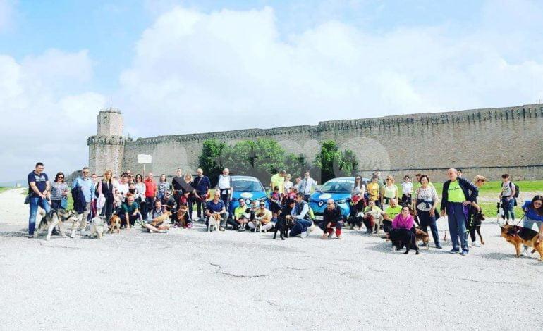 Trekking urbano con i cani, Assisi accoglie i camminatori e i loro amici a 4 zampe
