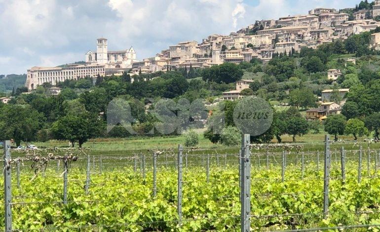Primavera 2019 a sorpresa ad Assisi: ma il meteo peggiora nel weekend