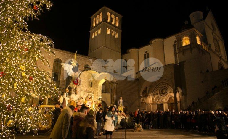 Acceso l'albero di Natale 2018 della Basilica di San Francesco ad Assisi (FOTO)
