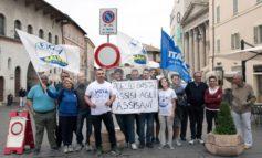 Chiusura del traffico, la Lega Assisi in protesta contro la giunta