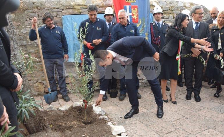 Luigi Di Maio ad Assisi pianta un albero di pace e chiude le celebrazioni francescane (foto)