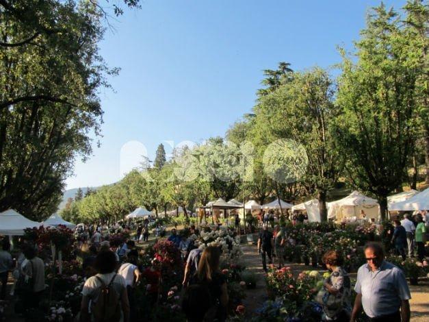 I giorni delle rose 2017, successo a Villa Fidelia di Spello