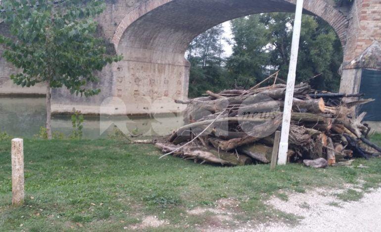 Petrignano di Assisi, tronchi rimossi e strade riasfaltate: l'annuncio di Lupattelli e Corazzi
