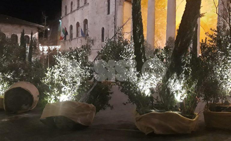 Natale ad Assisi cadente: il vento 'abbatte' parte del Bosco Incantato (foto)