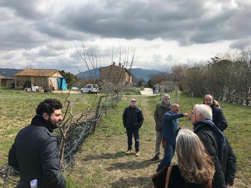 Tanti partecipanti al corso sulla potatura degli alberi da frutto dell'Assisi Nature Council
