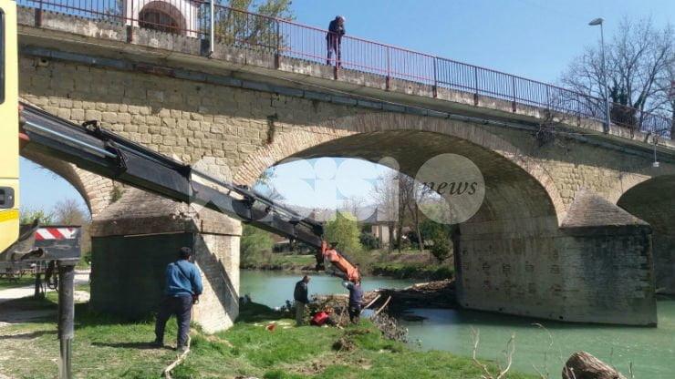 Diga sul Chiascio a Petrignano di Assisi, la Provincia elimina i tronchi dal fiume