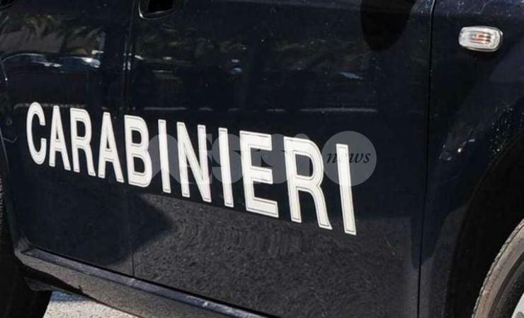 Assalita da due cani a Castelnuovo di Assisi, anziana ricoverata in ospedale