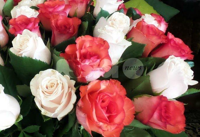 Le Rose per Dono 2017
