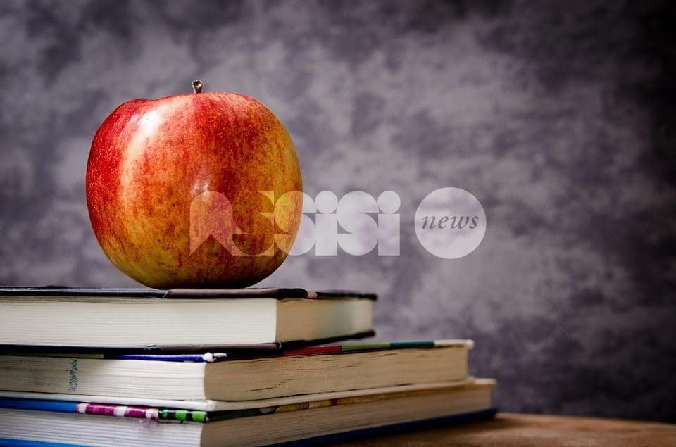 Iscrizioni mense e trasporti scolastici, uffici chiusi senza preavviso: Lega Assisi all'attacco