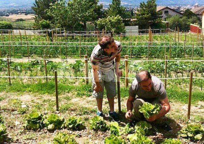 Bandiera verde agricoltura 2017, premiato il Serafico di Assisi