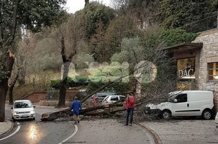 Maltempo, raffiche di vento spazzano l'Umbria: 36 ore di interventi 'no stop'