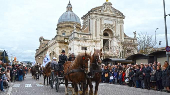 Assisi amica degli animali sabato 20 gennaio la - La tavola rotonda assisi ...