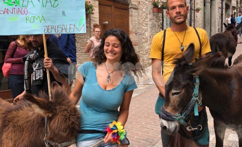 Passa anche da Assisi la Marcha por la Paz di quattro pellegrini e tre somari