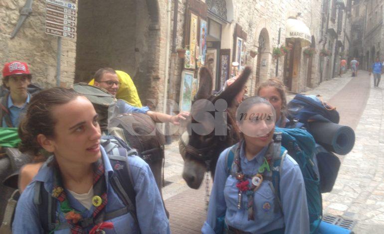 Il gruppo Scout Agesci 9 Roma conclude ad Assisi il viaggio con tre muli