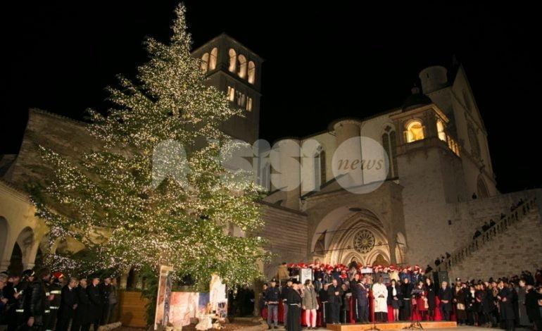 Assisi, sabato 8 dicembre l'accensione e la benedizione di albero e presepe a San Francesco
