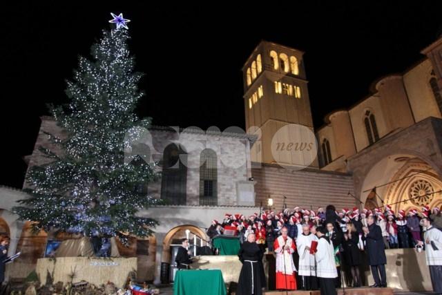 L'albero di Natale dei frati di San Francesco per il Medio Oriente