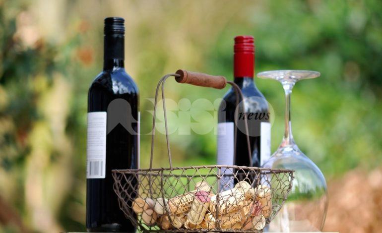 Torna ViniVeri Assisi 2019, una giornata dedicata al vino naturale