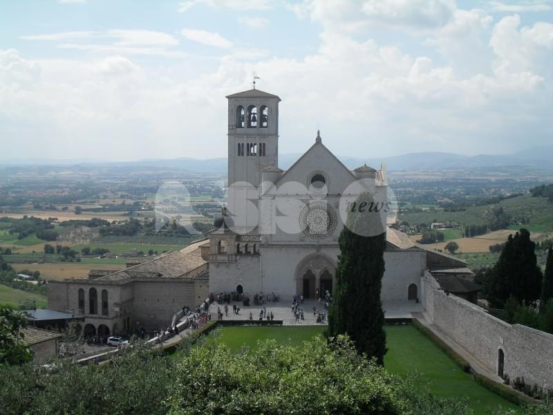 All'Archivio di Stato di Assisi l'iniziativa L'olivo nella terra di San Francesco