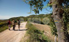 Slow Way Festival 2019, i cammini protagonisti ad Assisi: il programma