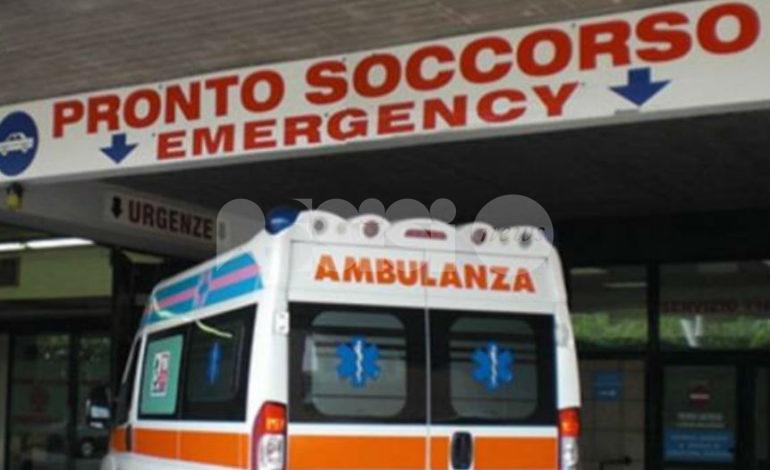 Cannara, assisano aggredito da due cani: è in ospedale a Perugia
