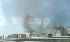 Incendio a Ospedalicchio, fumo e segnalazioni: fiamme subito spente