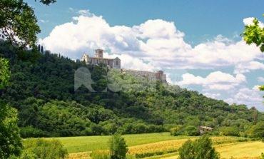 Bosco di San Francesco, due domeniche all'insegna della natura