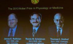 Meccanismi molecolari non convenzionali, 90 giovani scienziati da tutto il mondo a Santa Maria degli Angeli