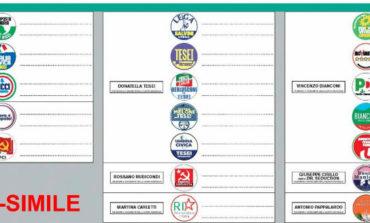 Elezioni regionali Umbria 2019, come si vota il 27 ottobre (fac simile)