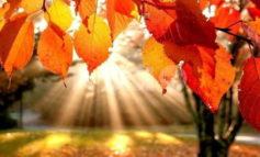 Meteo Assisi 22-24 novembre 2019: cala la pioggia e spunta il sole