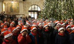 Natale 2019 ad Assisi, nel giorno dell'Immacolata accesi eco-alberi e luminarie (foto)