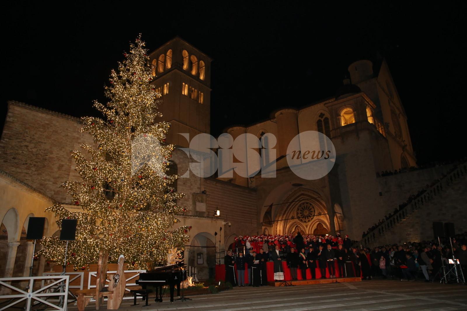Acceso l'albero di Natale 2019 della Basilica di San Francesco ad Assisi (FOTO+VIDEO)