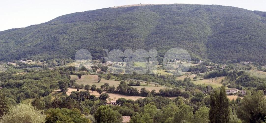 """Parco del Monte Subasio, Mignani: """"La valorizzazione sia anche custodia"""""""